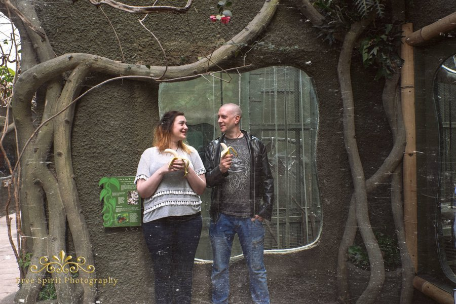 Chester_Zoo_014