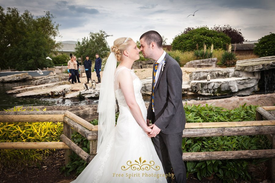 Chester_Zoo_Wedding_Photography