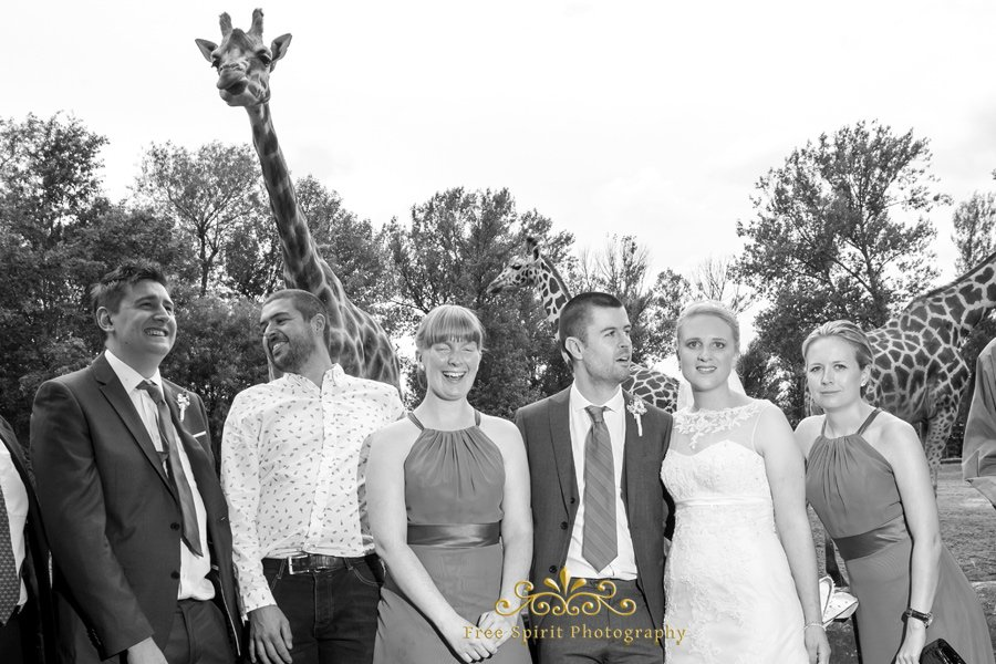 Chester_Zoo_Weddings