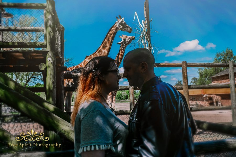 Chester_Zoo_021