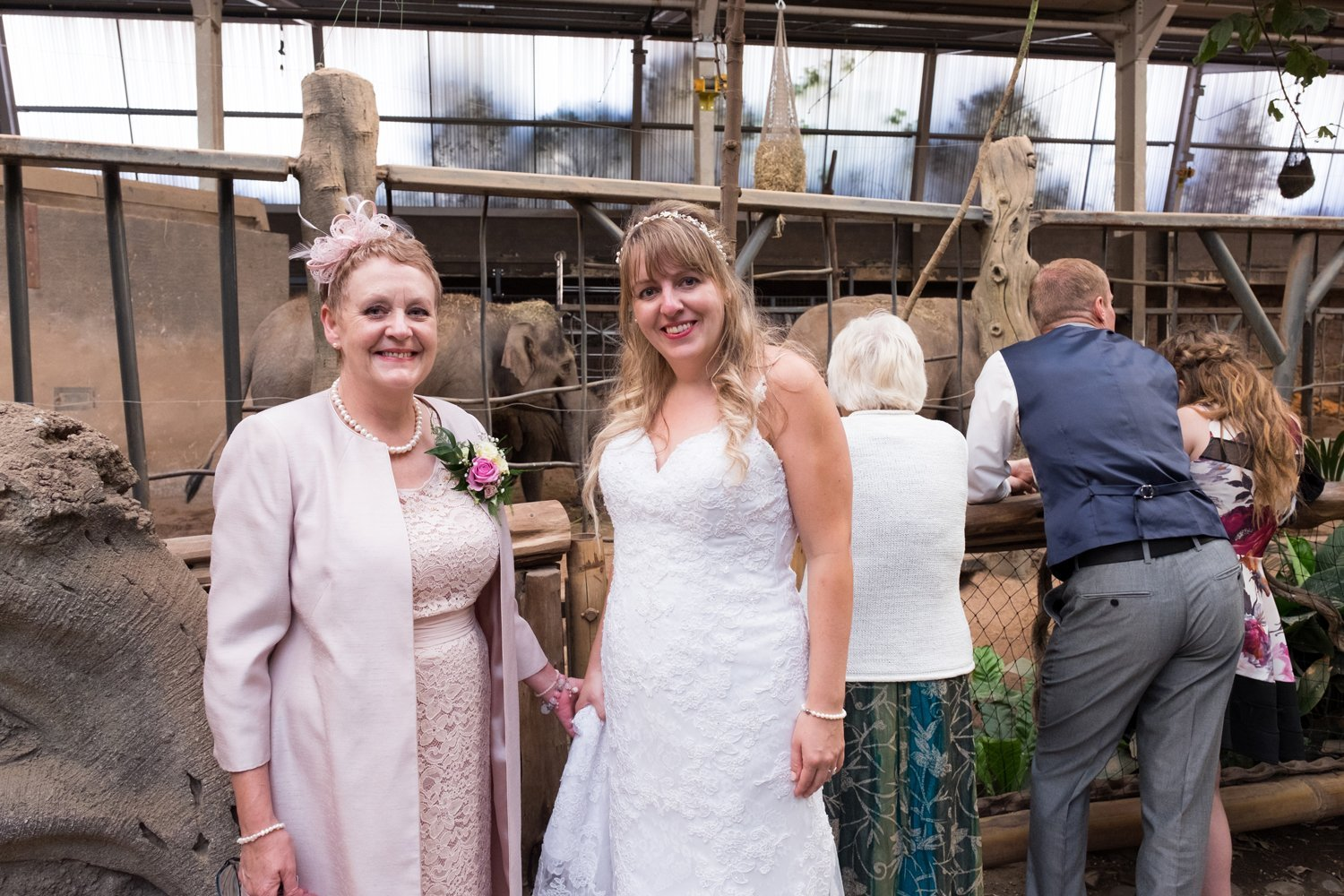 wedding photographer chester zoo