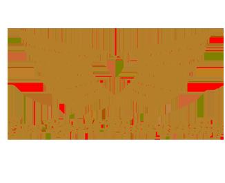 freespiritphotography.co.uk